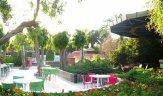 Okaliptus Tatil Köyü