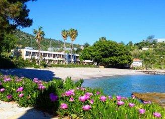 Marvel Tree Beach Hotel